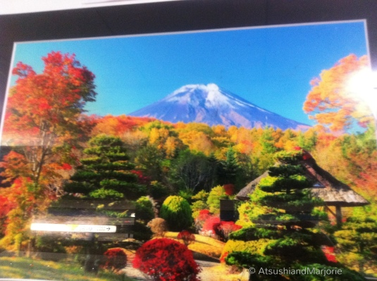 20111119-011158.jpg