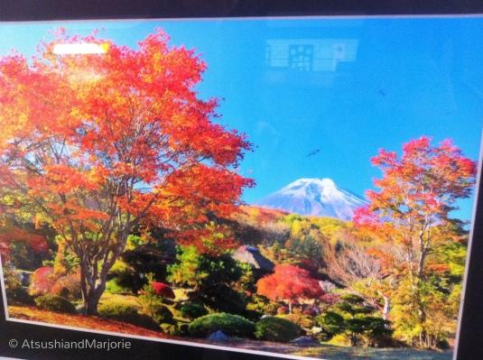 20111119-011259.jpg