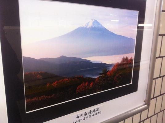 20111119-011347.jpg